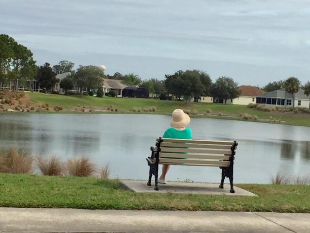 A person sitting on a bench next to a body of water  Description automatically generated