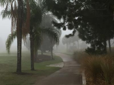 This image has an empty alt attribute; its file name is fog-near-farm.jpg